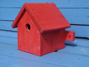 Bird box for sale