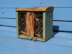 bug-house-for-sale