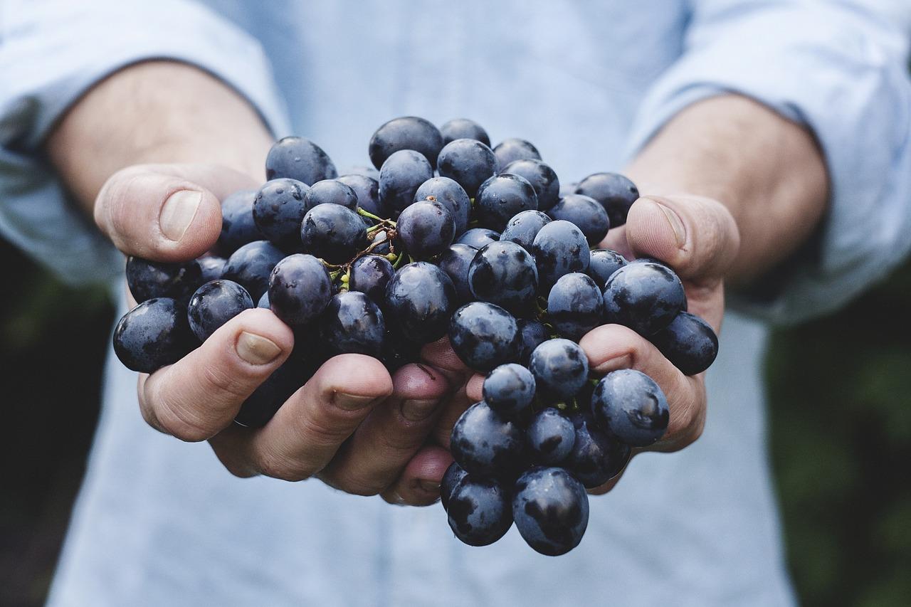 Grapes anyone?