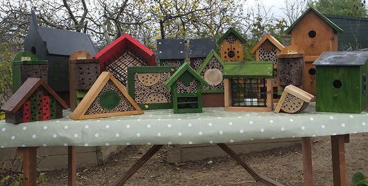 Men's Shed Petworth - A selection of recent projects